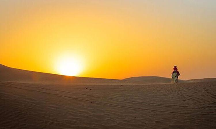 Sunrise Desert Safari Abu Dhabi